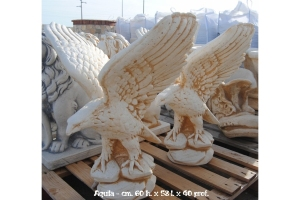 Aquila su Pietra prende il volo