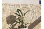 Piastrelle in Pietra di Trani tranciata retrosegata  sp. cm. 1-3