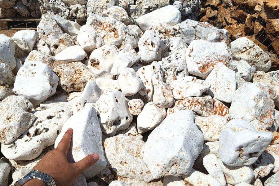 Rocce da giardino anticate della murgia michele cioffi for Piccole cascate da giardino